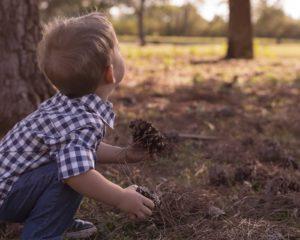 montessori alsace pedagogie enfant formation vie sensorielle