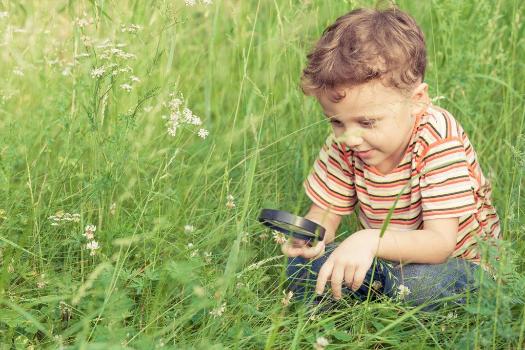 Atelier Montessori découverte de la nature